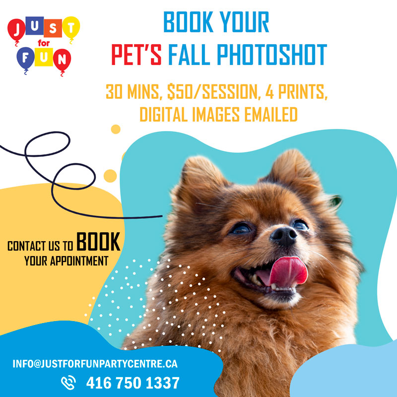 Pet Photoshoot Services